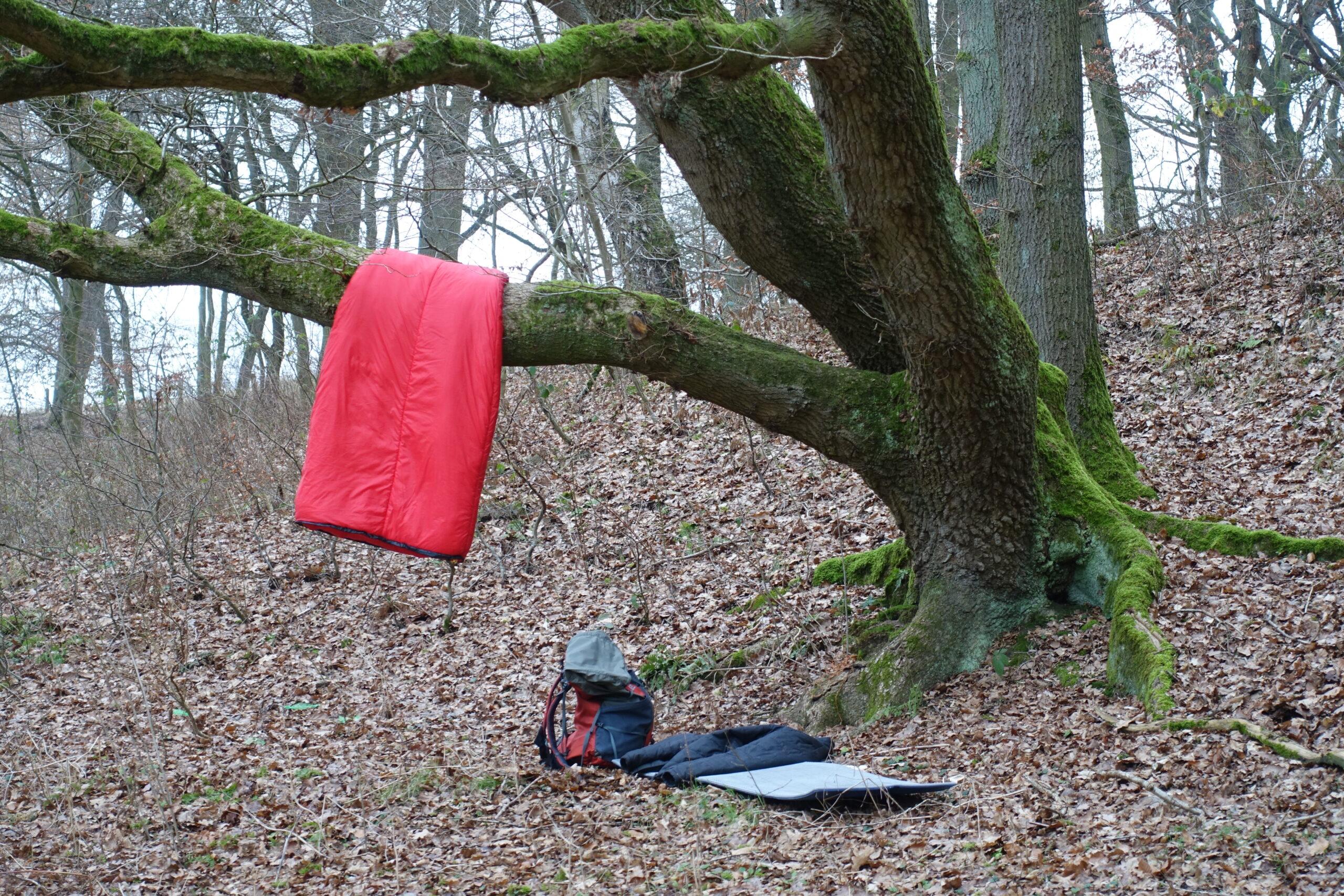 Schlafsack sleepingbag Ast